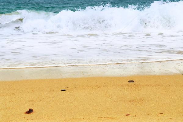 Sandy ocean beach Stock photo © elenaphoto