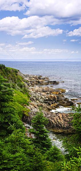 Zdjęcia stock: Wybrzeża · nowa · fundlandia · sceniczny · widoku · brzegu