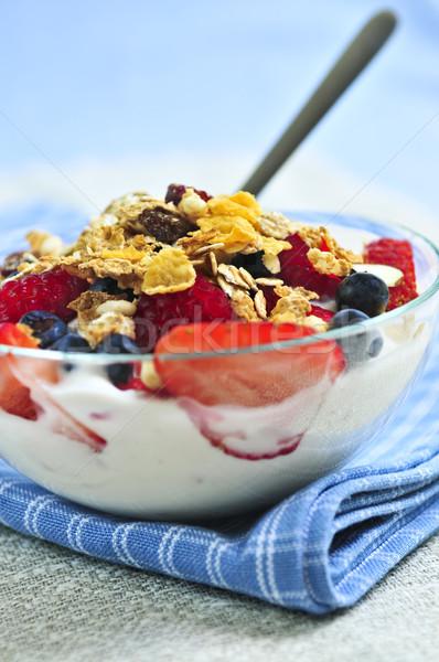 ストックフォト: ヨーグルト · 液果類 · グラノーラ · 新鮮な · 健康