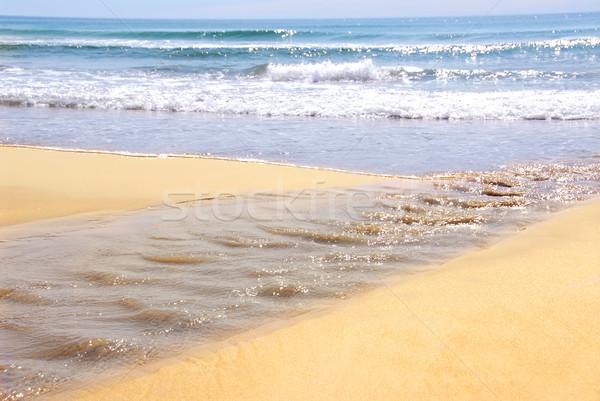 Ocean shore Stock photo © elenaphoto