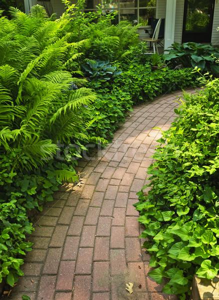Stok fotoğraf: Tuğla · yol · bahçe · bereketli · yeşil · yaz