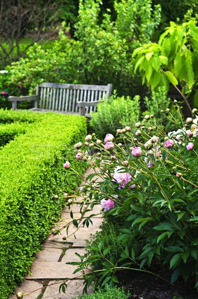 豊かな 緑 庭園 石 造園 花 ストックフォト © elenaphoto