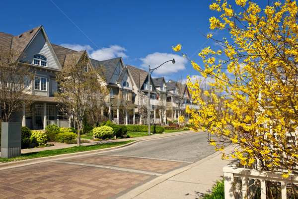 Houses on residential street in spring Stock photo © elenaphoto