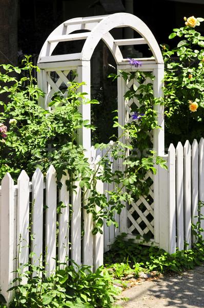 White arbor in a garden Stock photo © elenaphoto