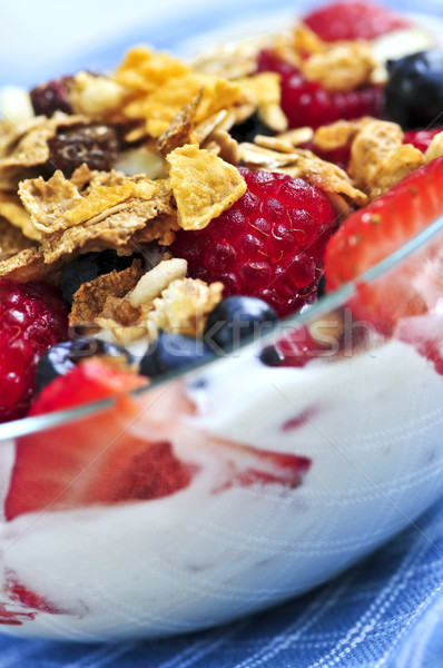 Yogurt with berries and granola Stock photo © elenaphoto