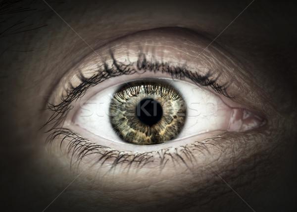 Maschio occhi macro primo piano palpebra ciglia Foto d'archivio © elenaphoto