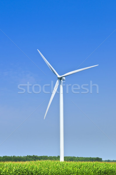 Wind turbine in field Stock photo © elenaphoto