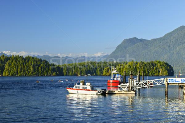 Barcos doca Vancouver ilha Canadá costa Foto stock © elenaphoto
