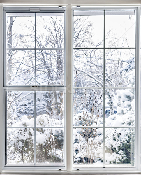 Winter view through window Stock photo © elenaphoto