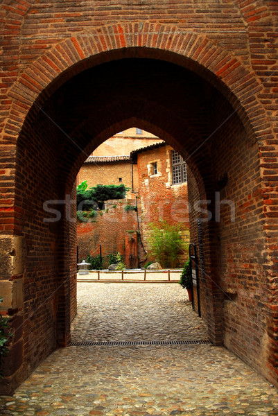 Courtyard of Cathedral of Ste-Cecile in Albi France Stock photo © elenaphoto