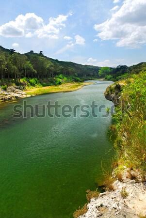 River Gard in southern France Stock photo © elenaphoto