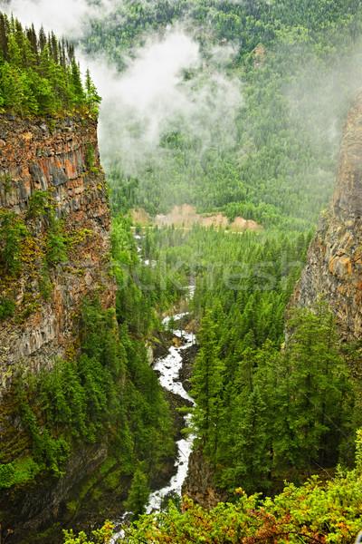 Canyon of Spahats Creek in Wells Gray Provincial Park, Canada Stock photo © elenaphoto