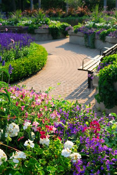 Foto stock: Formal · jardim · flores · verão · natureza