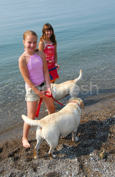 Two girls playing with dogs Stock photo © elenaphoto