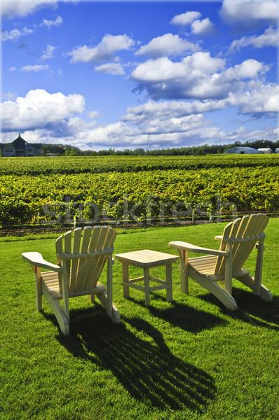 Chairs overlooking vineyard Stock photo © elenaphoto