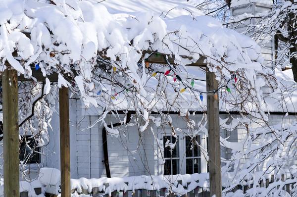 Casa invierno cubierto nieve Toronto Foto stock © elenaphoto