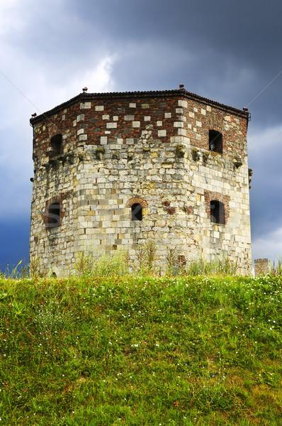 Tour Belgrade historique Voyage prison prairie Photo stock © elenaphoto