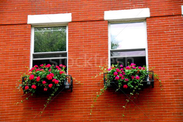 Boston huis fragment Rood baksteen historisch Stockfoto © elenaphoto