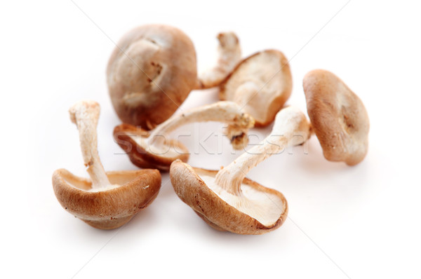 Shiitake mushrooms Stock photo © elenaphoto