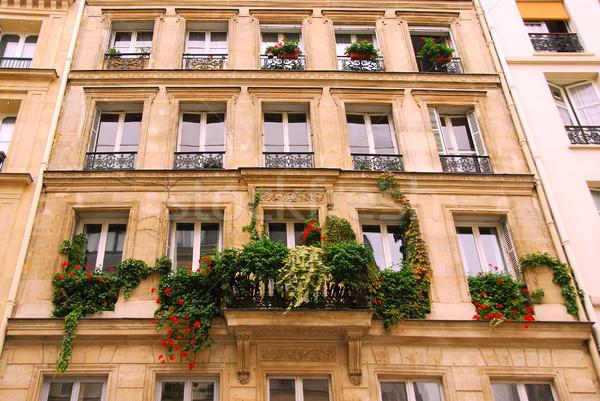 Windows with ivy Stock photo © elenaphoto