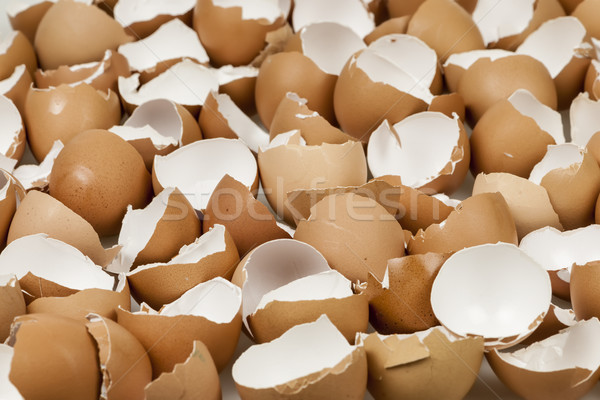 Broken eggshells Stock photo © elenaphoto