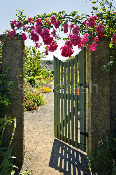 Open garden gate with roses Stock photo © elenaphoto