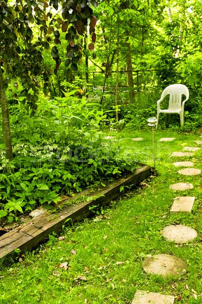 Foto stock: Verde · jardim · caminho · pedras · canto