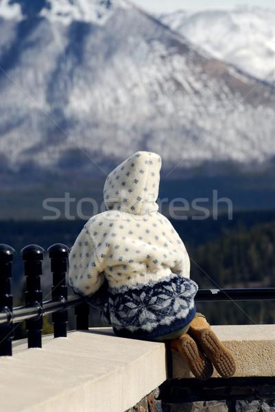 Mountain view Stock photo © elenaphoto