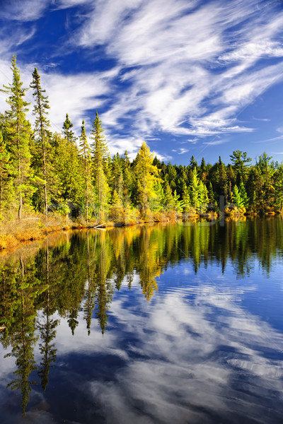 Forest and sky reflecting in lake Stock photo © elenaphoto