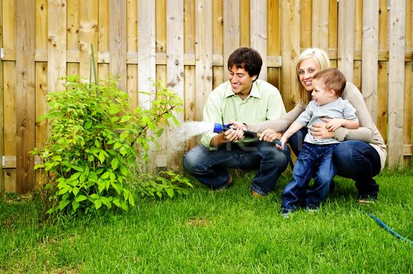 Family watering plant Stock photo © elenaphoto