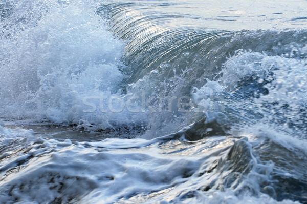 Waves in stormy ocean Stock photo © elenaphoto