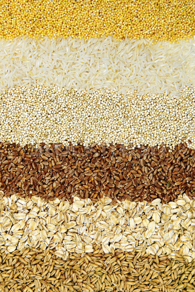 Various grains close up Stock photo © elenaphoto