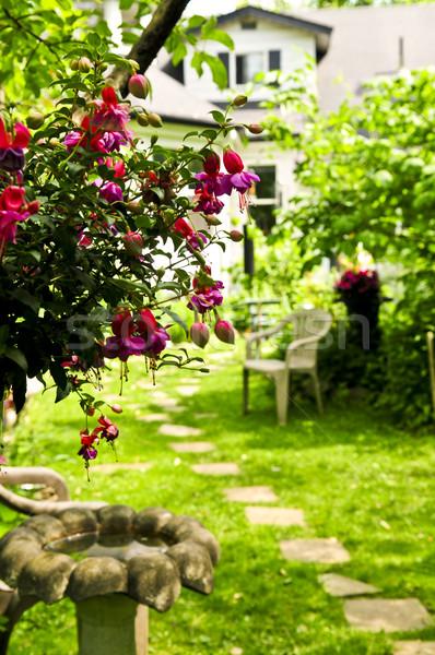 Foto stock: Casa · jardim · caminho · pedras · casa