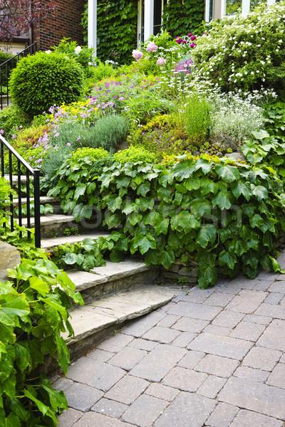 Natural stone garden stairs Stock photo © elenaphoto