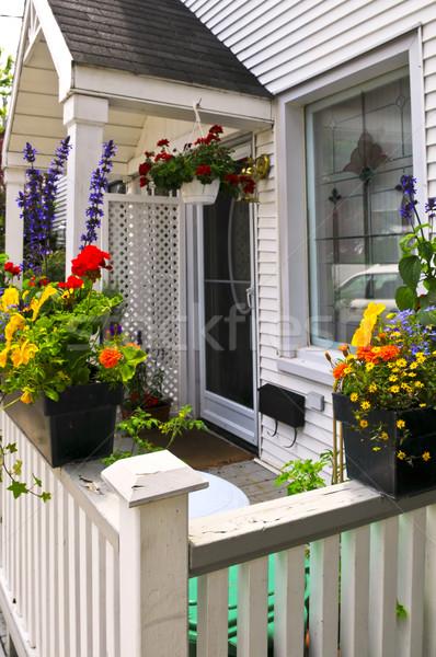 Цветы у крыльца на даче