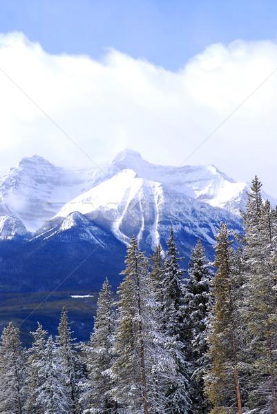 Winter mountains Stock photo © elenaphoto