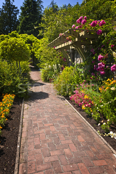 Flower garden with paved path Stock photo © elenaphoto