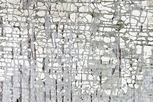 Stockfoto: Oude · geschilderd · hout · verweerde · textuur · abstract