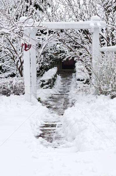 Winter garden Stock photo © elenaphoto