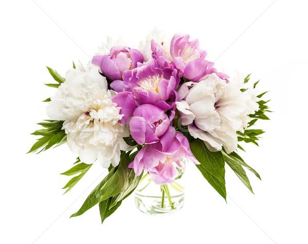 Peony flower bouquet isolated Stock photo © elenaphoto