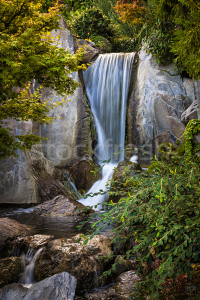 Waterfall in Japanese garden Stock photo © elenaphoto
