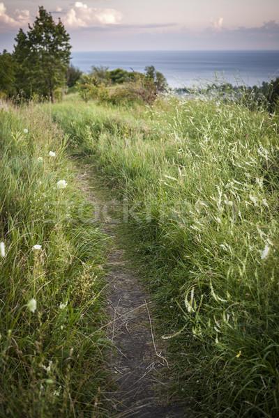 Footpath along cliffs Stock photo © elenaphoto
