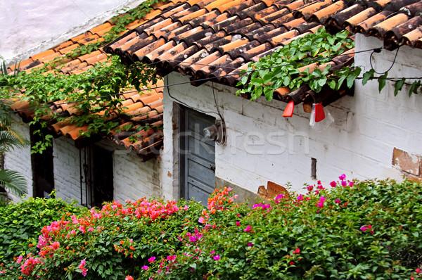 Old buildings Puerto Vallarta, Mexico Stock photo © elenaphoto