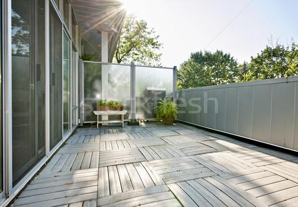 Lakás erkély tágas modern növények napos idő Stock fotó © elenaphoto