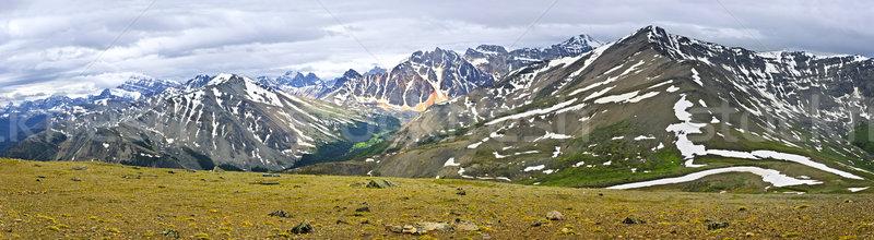 Panorama of Rocky Mountains in Jasper National Park, Canada Stock photo © elenaphoto