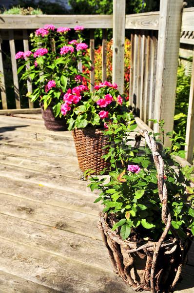 Flower pots on house deck Stock photo © elenaphoto