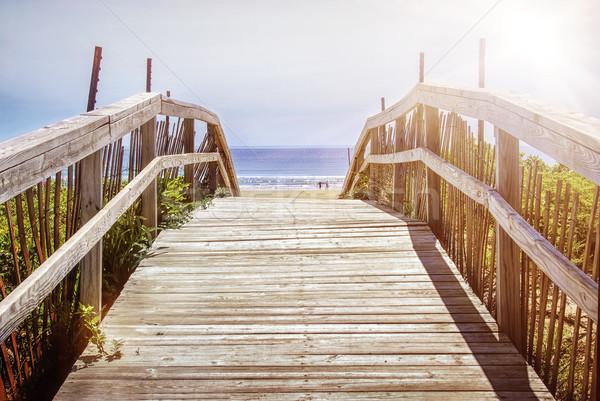 Path over sand dunes Stock photo © elenaphoto