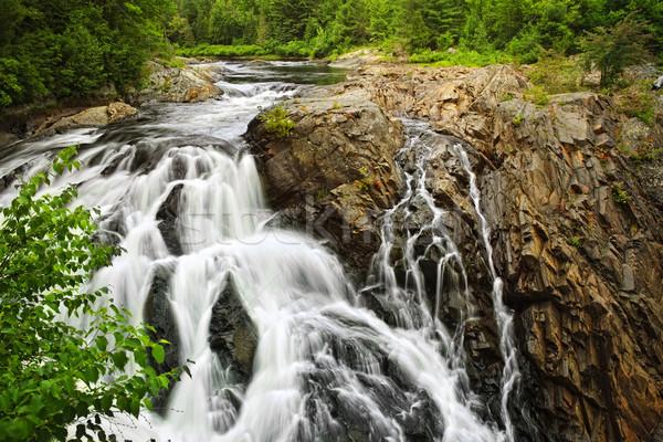 滝 北方 オンタリオ カナダ 公園 夏 ストックフォト © elenaphoto