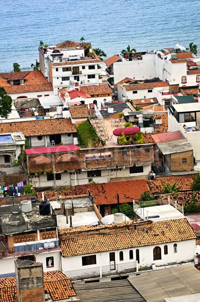 屋根 メキシコ 古い 建物 風景 ストックフォト © elenaphoto