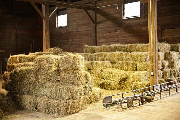 интерьер сарай сено продовольствие древесины стране Сток-фото © elenaphoto